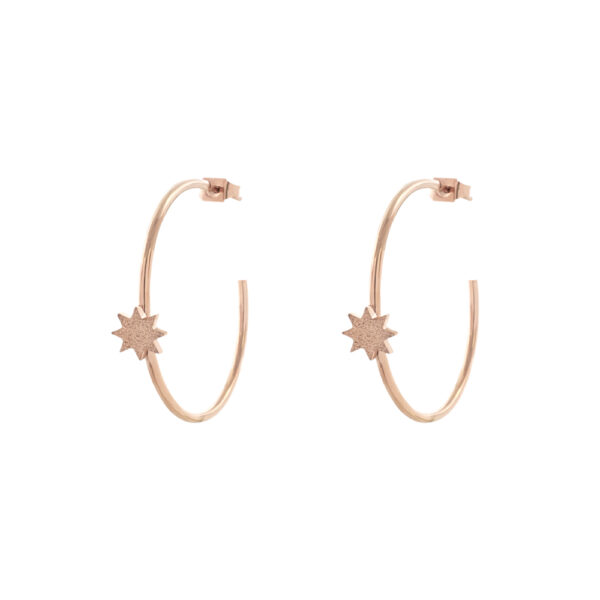 03L27-00549 Loisir Femininity Sundust Earrings