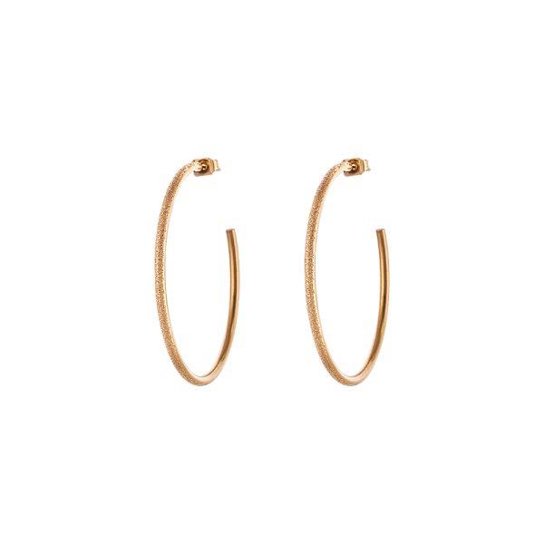 03L27-00551 Loisir Sparkling Earrings