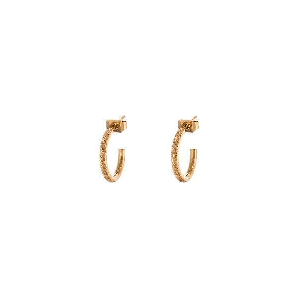 03L27-00557 Loisir Sparkling Earrings